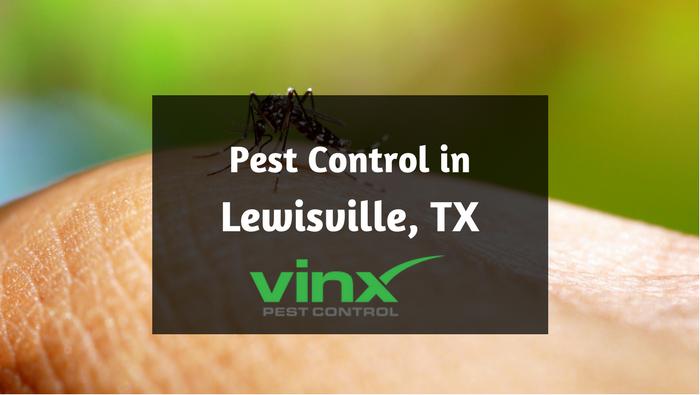 pest control lewisville tx