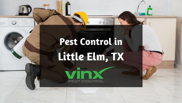 little elm tx pest control