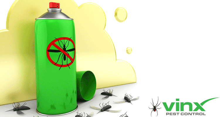 How to Get Rid of Crane Flies in 5 Steps