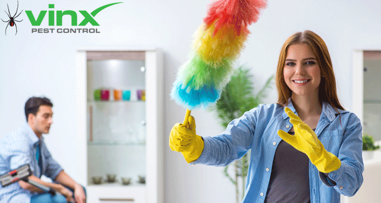Do It Yourself Pest Control: 15 Must-Have Tips